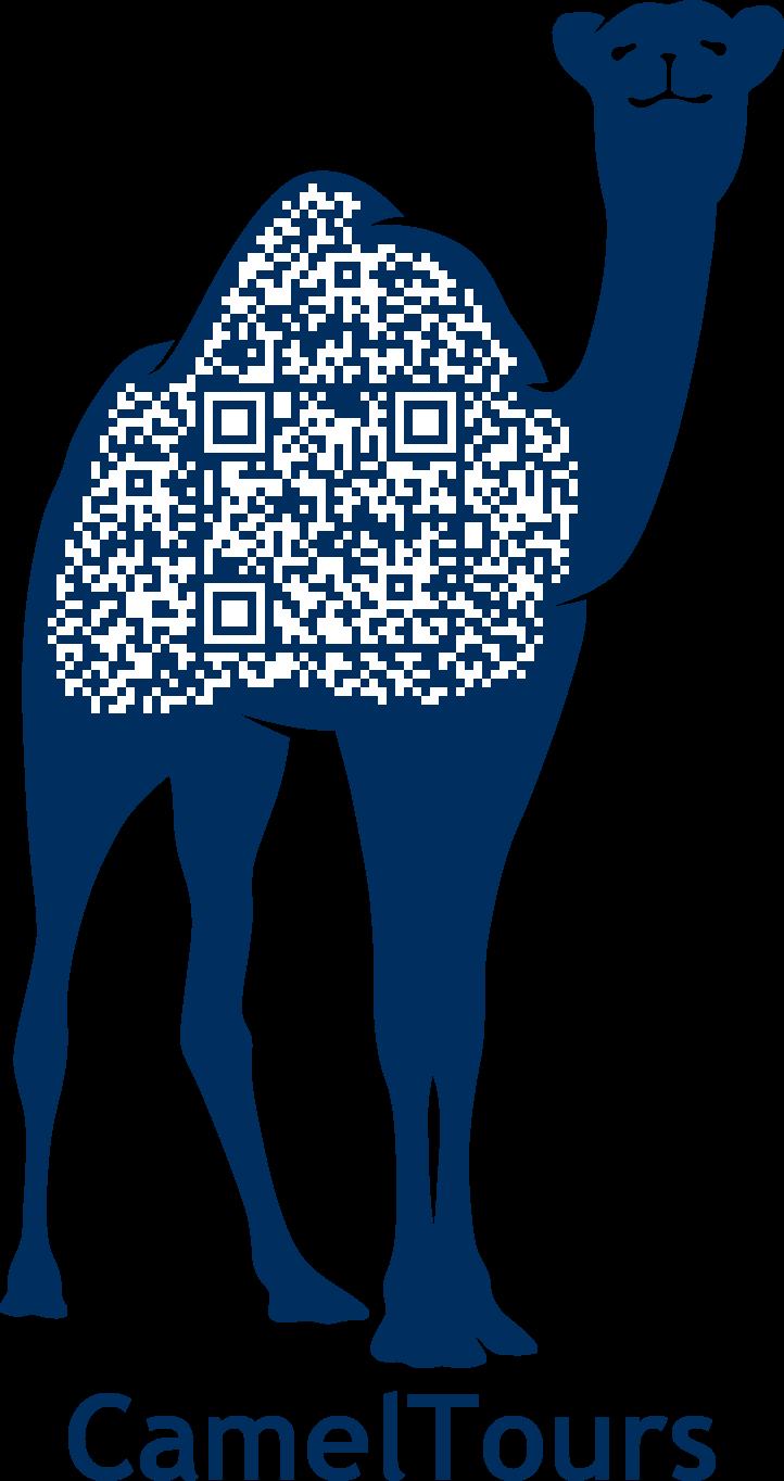 Camel Tours Logo